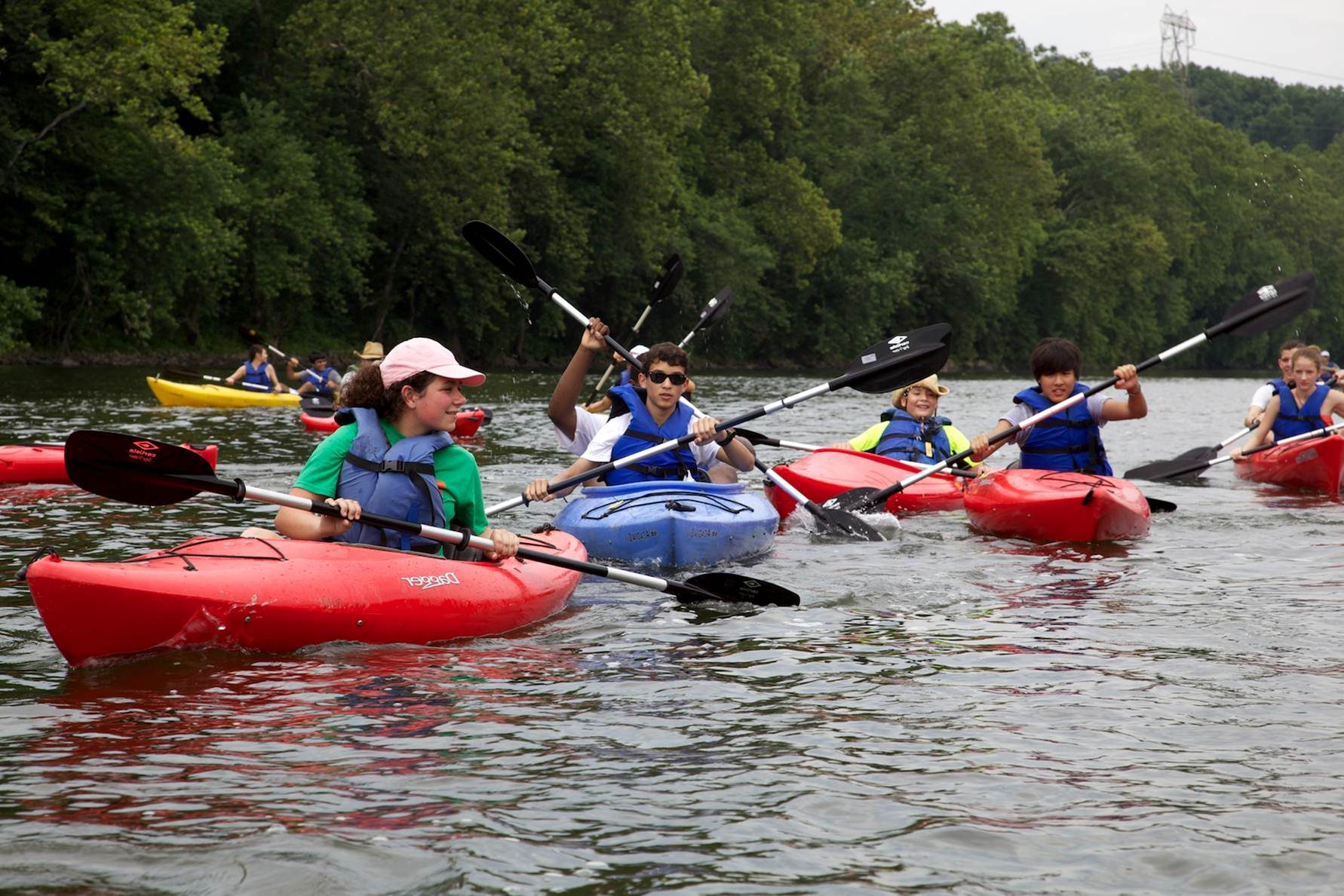 Free photograph; organized, paddling, kayaking
