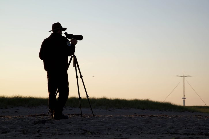 photographer, beach, coast, sunset
