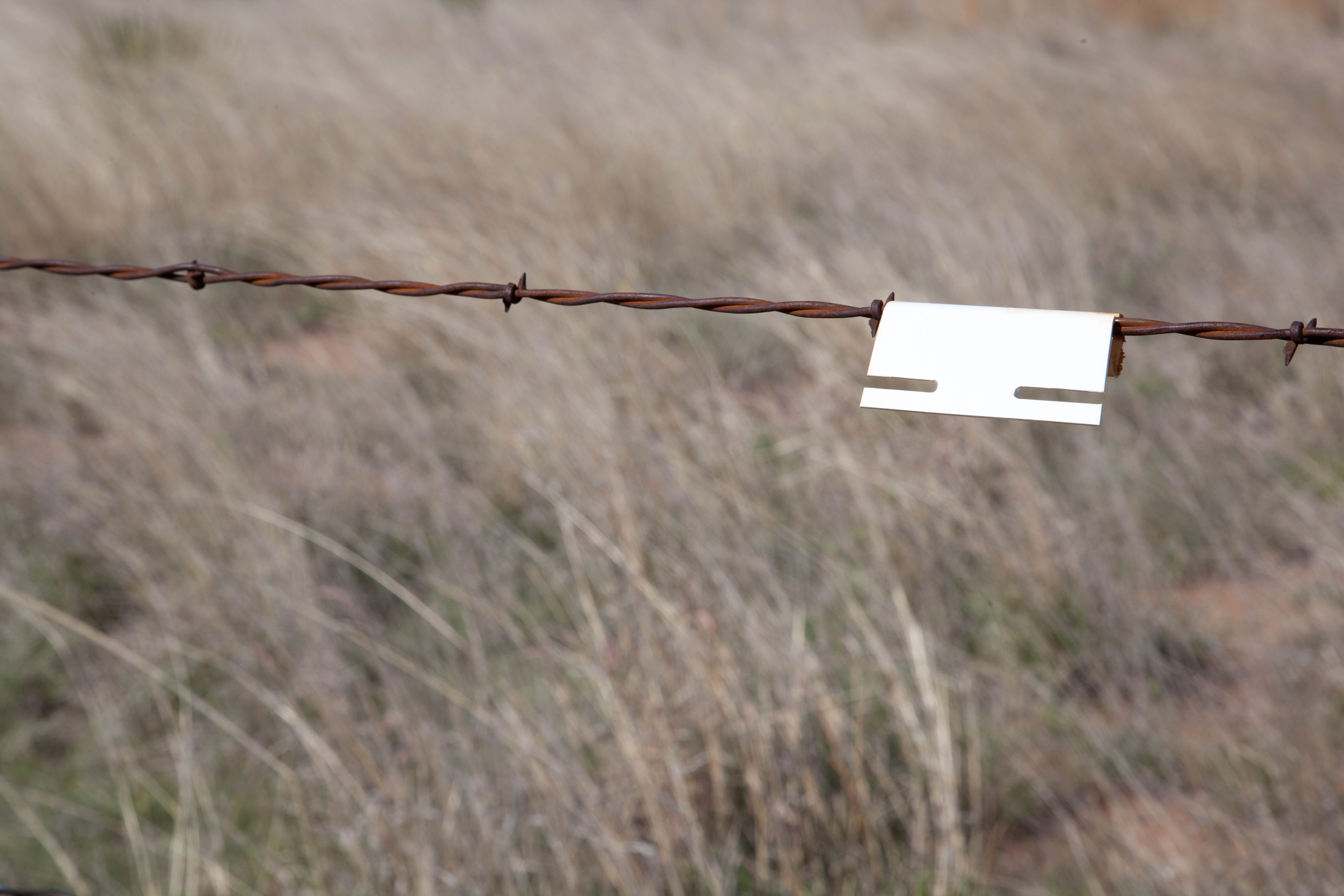 Free photograph; prairie, barbed, wire, rust, iron