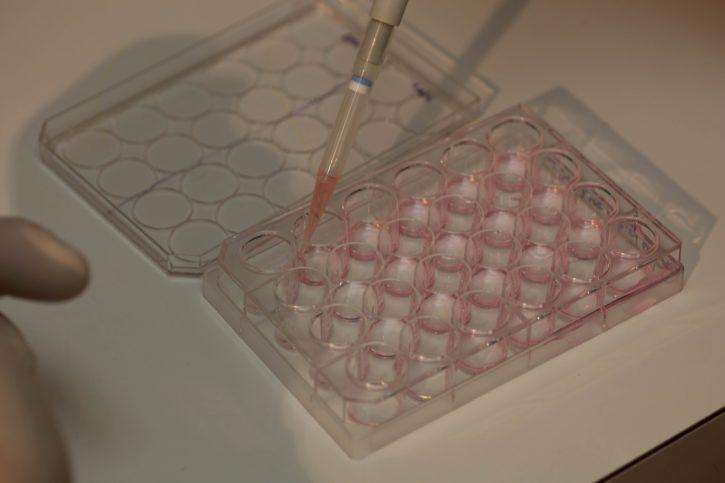 scientist, genetic, testing