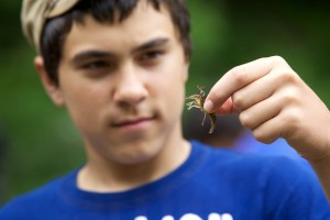 teen, boy, holding, crayfish