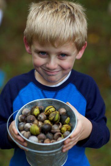 young, boy, proudly, displays, pail, acorns