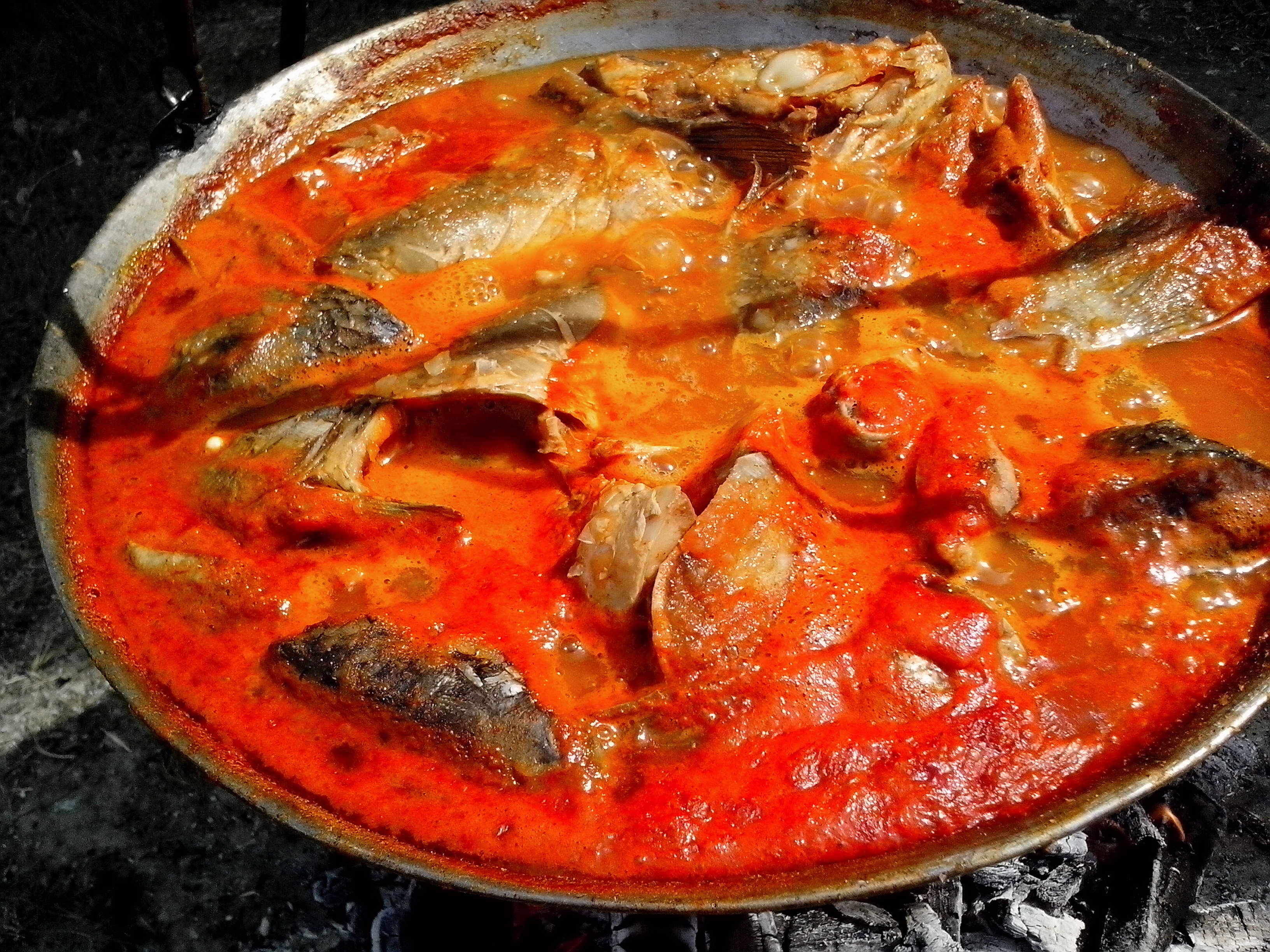 Free photograph; fish, stew, kettle