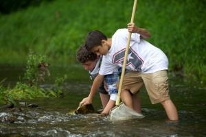 boys, moving, river, rocks