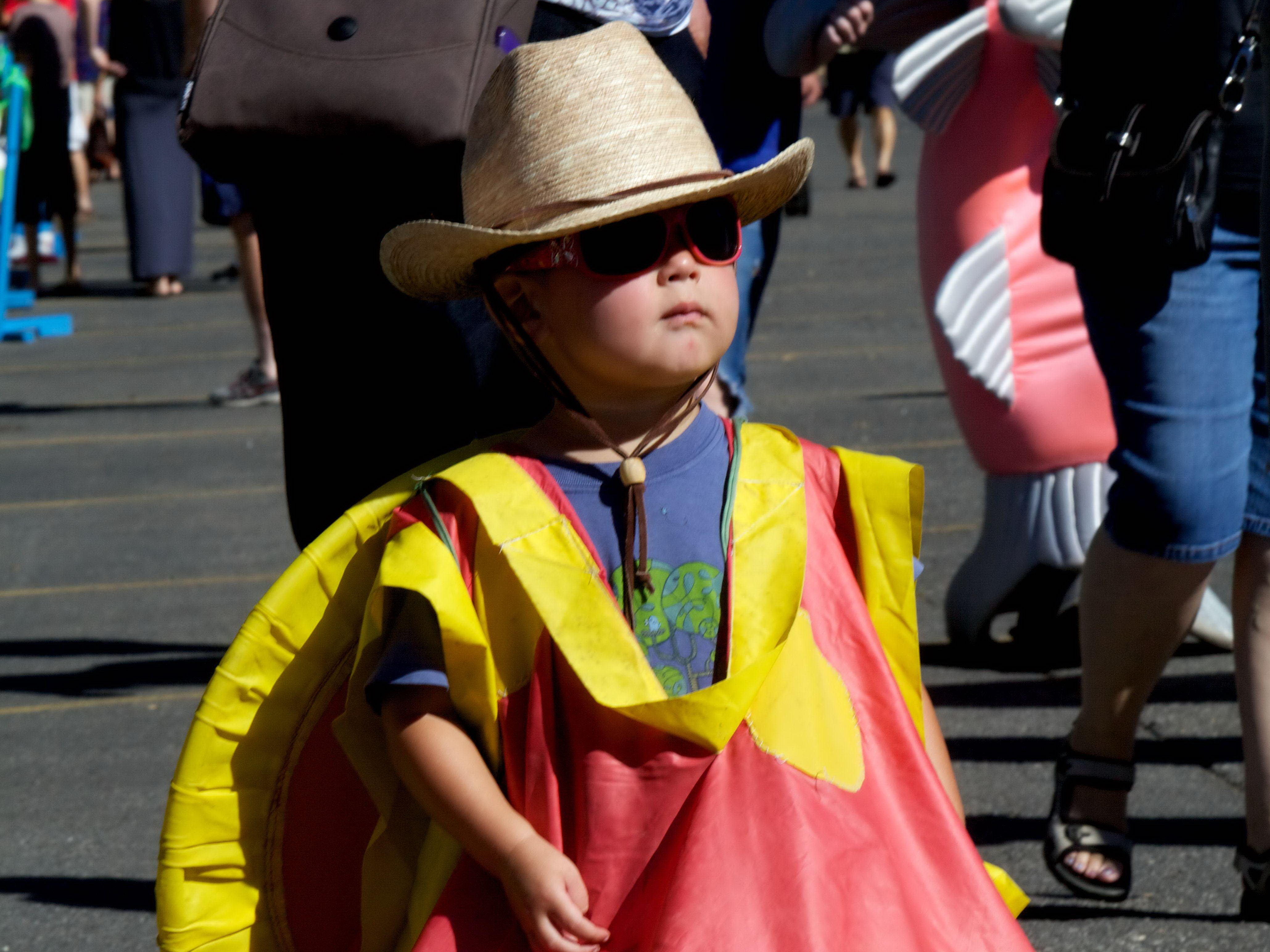 Free photograph; young, boy, costume, parade, child, funny