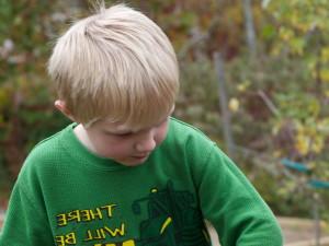 mladý chlapec, výsadba, žalude