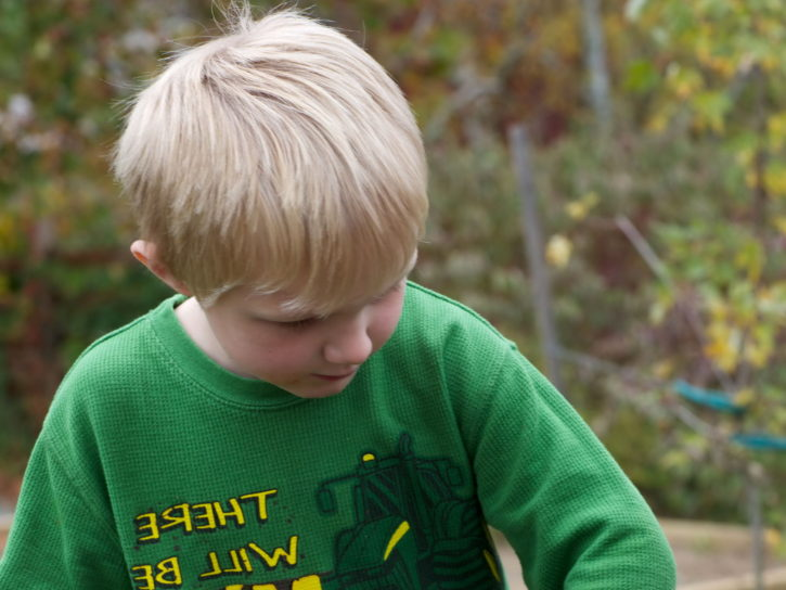 young, boy, planting, acorns