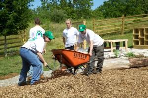 Ifjúsági, védelmi, hadtest, önkéntesek, terjed, talajtakaró