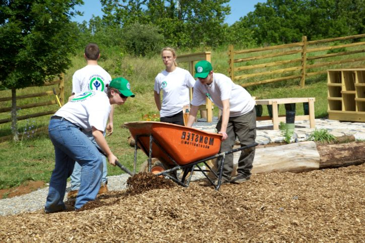 youth, conservation, corps, volunteers, spreading, mulch
