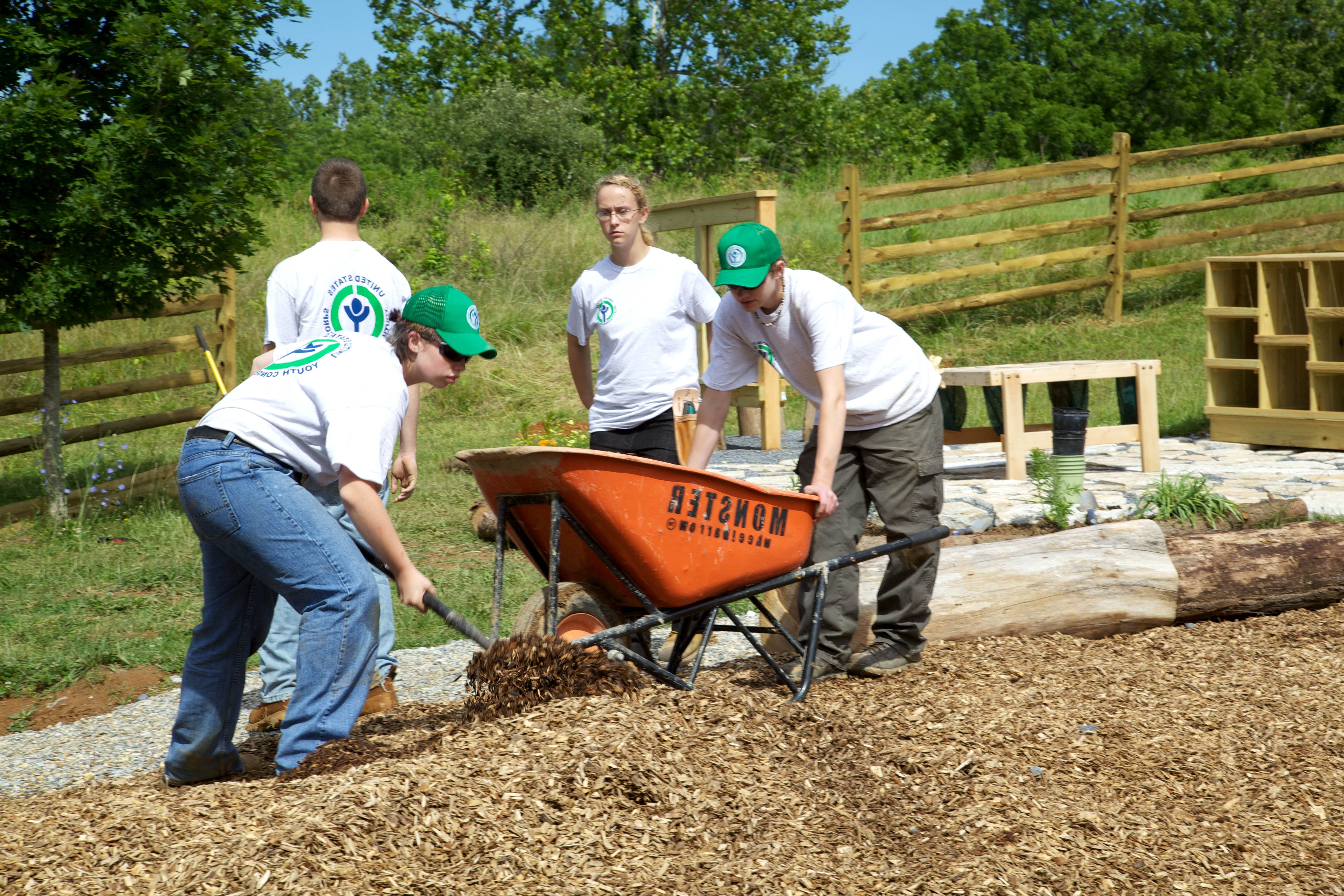 Free photograph; youth, conservation, corps, volunteers, spreading, mulch