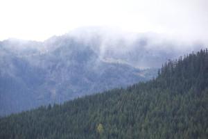 montagne, de forêts, coteaux