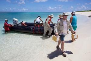 lidé, uvolnění, člun, léto, ostrov