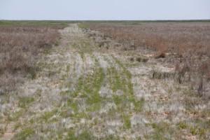 range, land, roads, desert