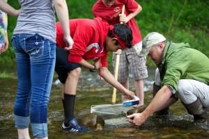 školní děti, zkouška, vody, kvalita, chemie, voda, řeka