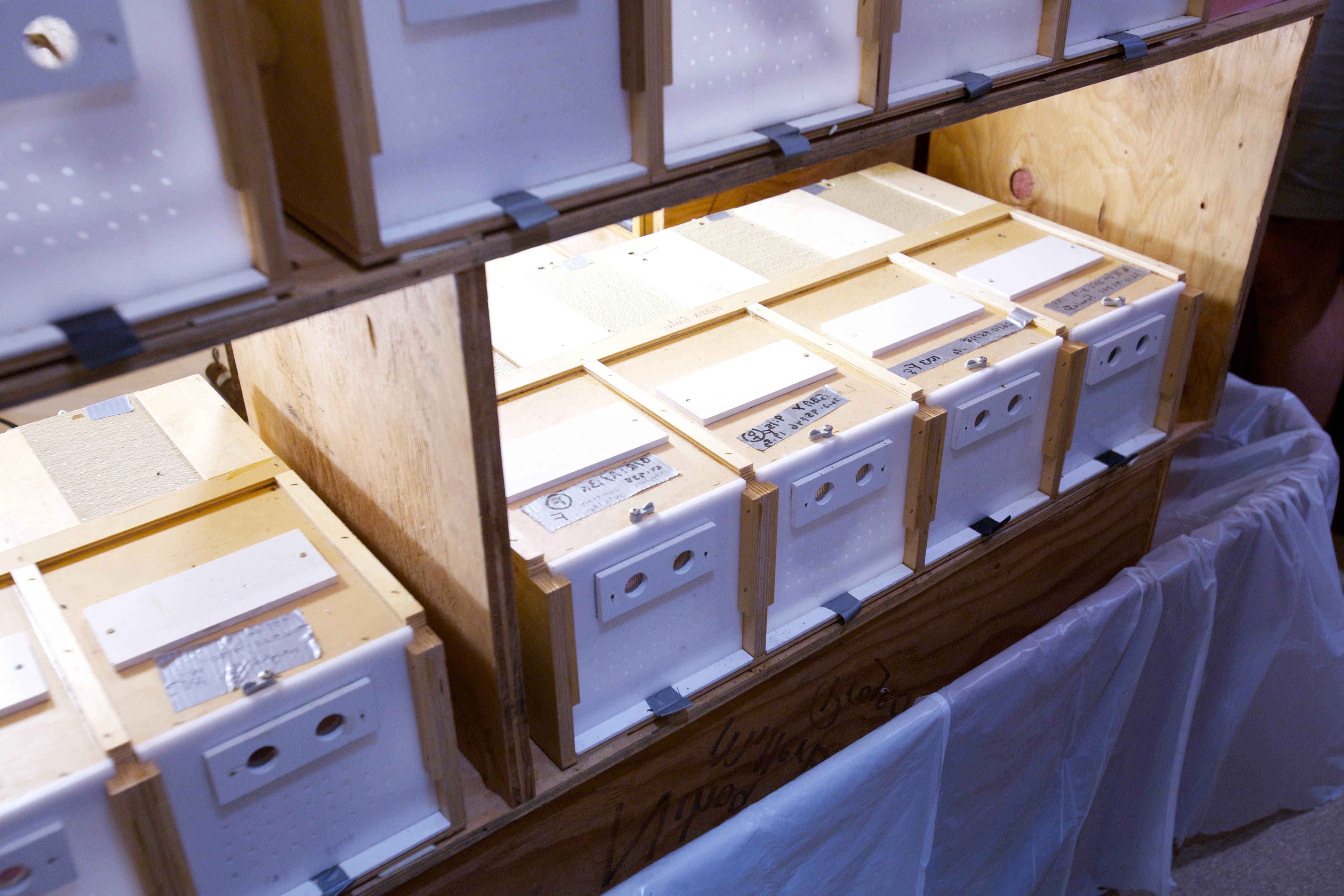 Free photograph; small, wooden, boxes