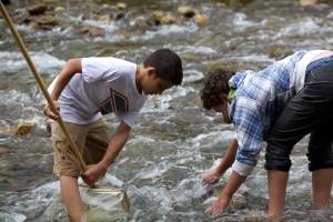 deux garçons, jouer, rivière, rivage, côte