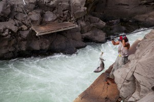 pecanje, Yakama, plemenske, član, mreže, losos, Klickitat, Rijeka