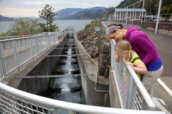 mother, daughter, child, dock, river