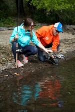 releasing, fall, chinook, salmon, fish, fishers