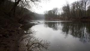 spring, woods, river, cannal, coast