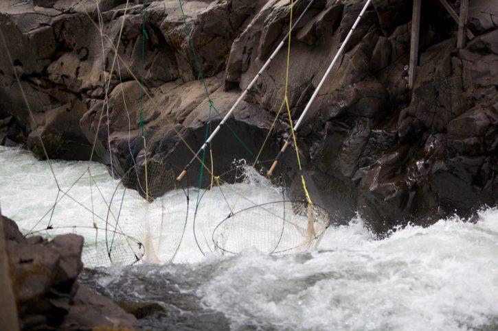 traditional, dip, net, fishing