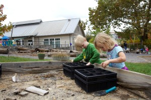 joven, lindo, niños, juego, jardín, patio trasero