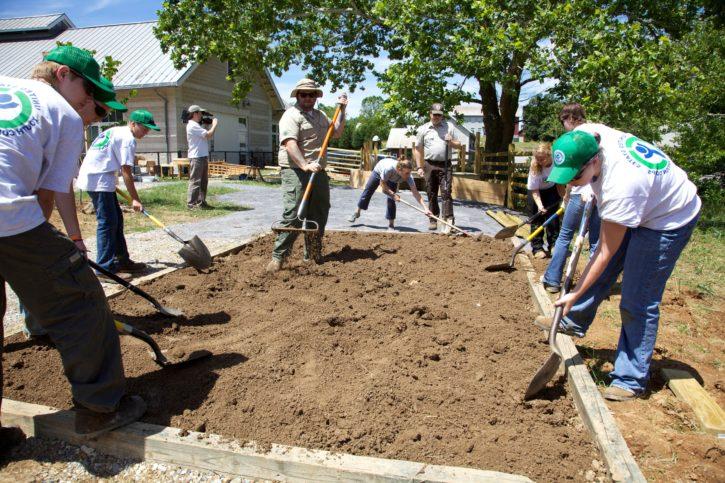 gardening, outdoor, working, youth, man