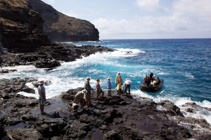 øya, utforske, ekspedisjon