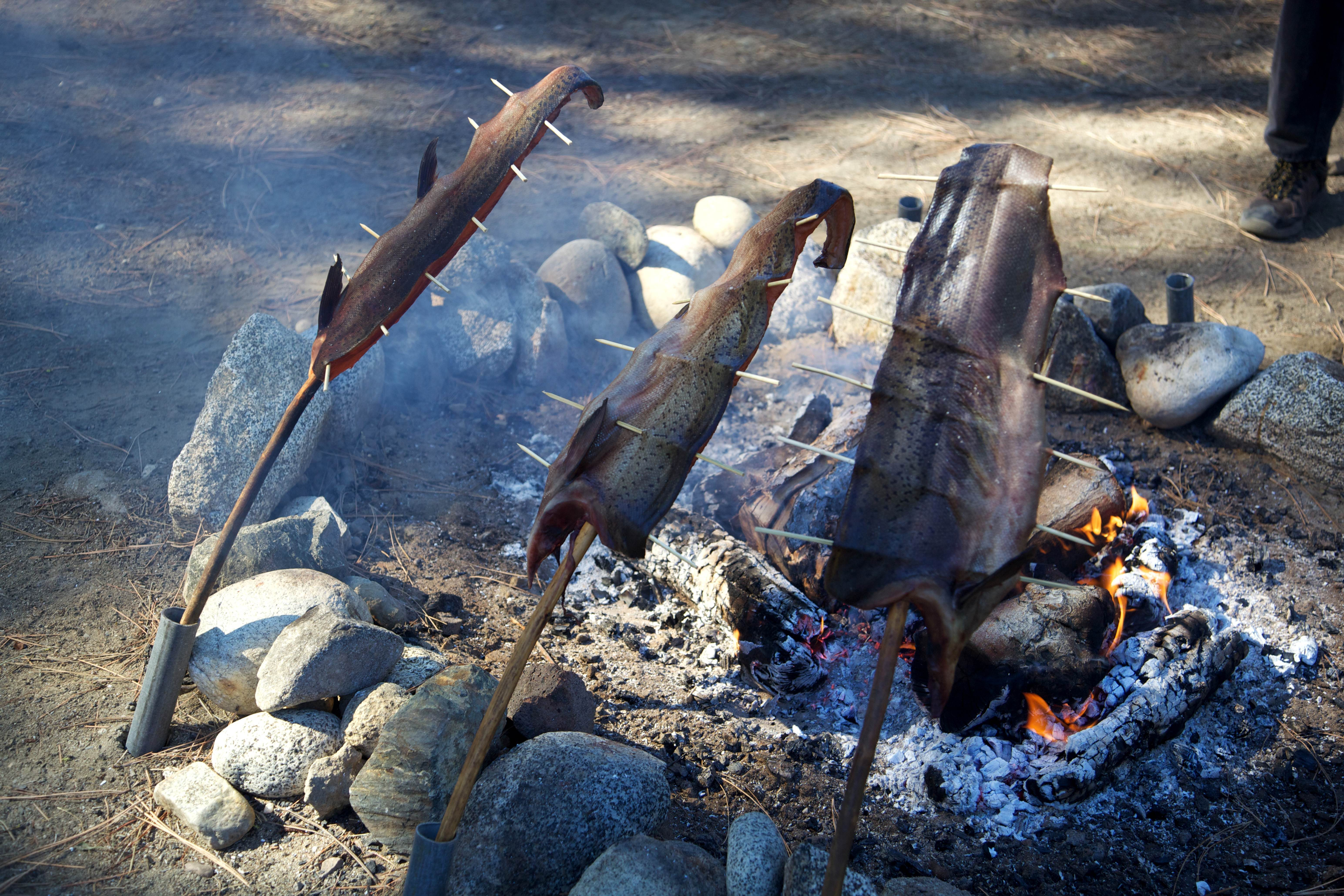 Free photograph; native, American, cooking, meat, fish
