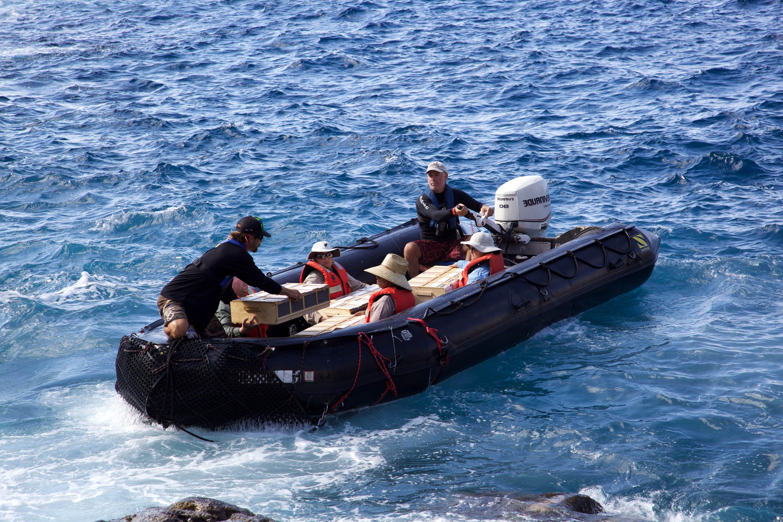Free photograph; people, boat, ocean, shore