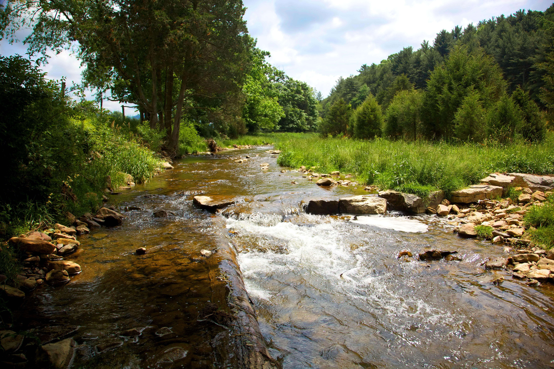 Free photograph; stream