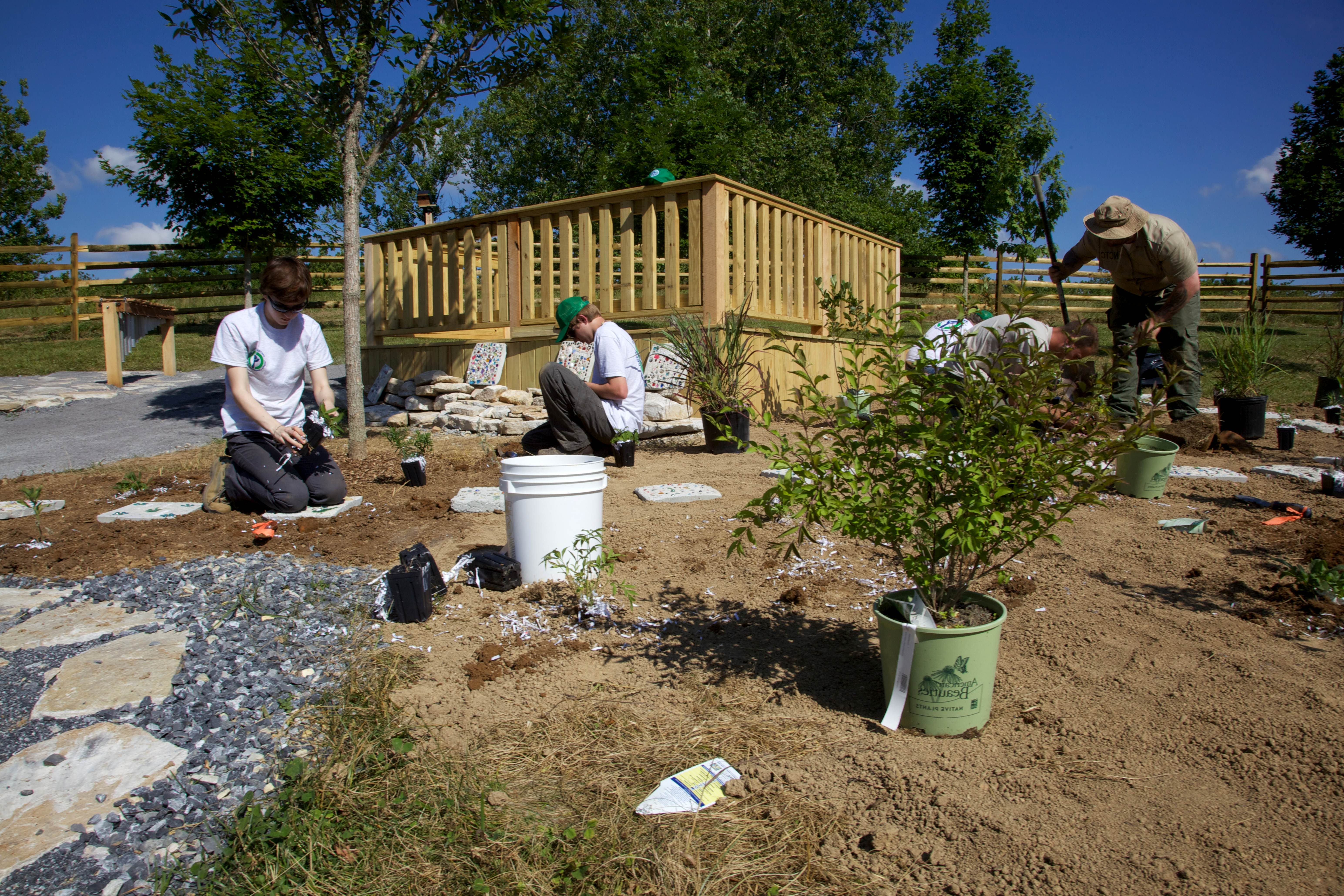 Free photograph; youth, working, gardening, conservation