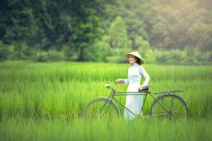 Asiatisk pige, cykel, grønne græs, glad, landskab, fritid, livsstil, udendørs