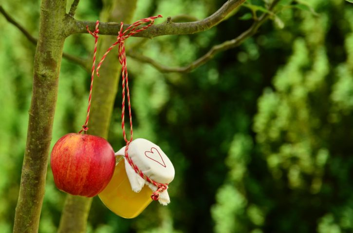 apple tree, fruit, garden, hanging, jar, summer season, vitamins