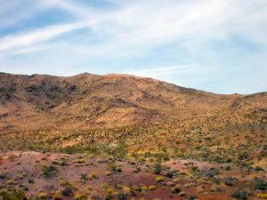 Südwesten der Vereinigten Staaten, Wüste, Natur
