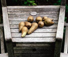 fruit, pears, agriculture, wood, farm, food