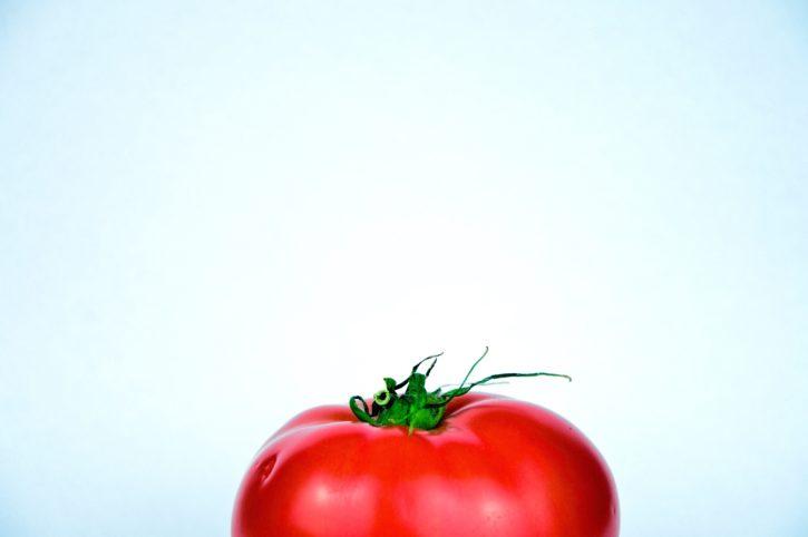 red tomato, still life, vegetable, food