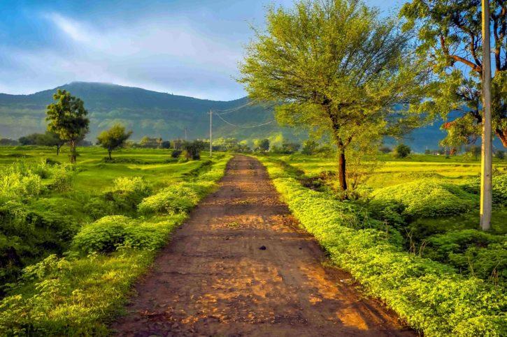 fazenda, campo, país, grama, estrada, rural, natureza