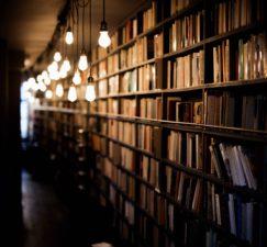 bibliothèque, livres, bibliothèque, éducation, recherche, école, étude