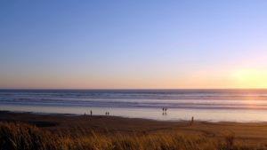 ocean, sea, shore, sky, beach, grass, nature