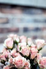 bouquet, flora, flowers, roses, bloom, blossom