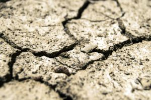 dry earth, soil texture, aridity, drought