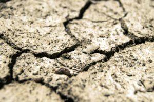 干土、土壤质地、干旱、干旱