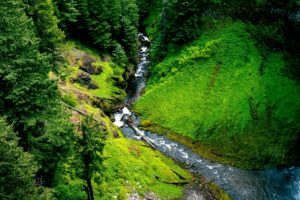 floden, creek, bjerg, natur, klipper, stream, træer, vandfald, skoven