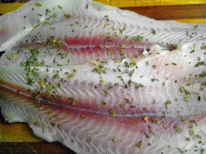 Ikan fillet daging segar, makanan organik