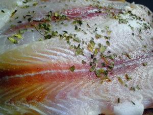 filetes de pescado, bagre Pangasius, carne