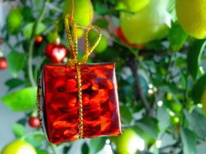 paquete rojo, papel de regalo, regalo