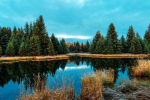 water, wilderness, woods, blue sky, conifer, country, fall, forest, lake, sunset