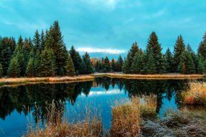 acqua, natura selvaggia, boschi, cielo blu, conifera, paese, caduta, foresta, lago, tramonto