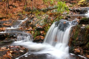 small waterfall, autumn season, forest, water, stream, foliage, fall, leaves, rocks